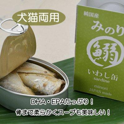 画像1: 【DHA・EPAたっぷり!】 純国産 日本のみのり いわし缶 100g
