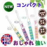 【NEW!コンパクト設計!】 シグワン コンパクト 歯ブラシ